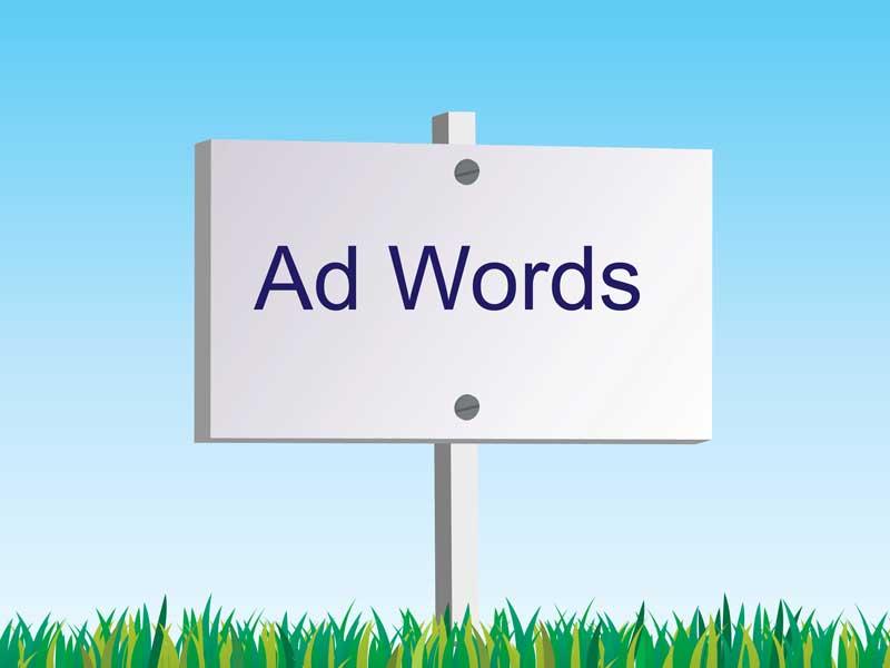 Adwords - Professionelle Werbung im Internet