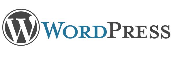 Das Conten Management System WordPress wird von Matt Cutts - Google empfohlen.